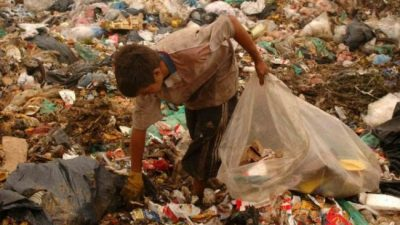 Un video desnudó la crisis social en Mar del Plata: buscan comida y cartón entre la basura