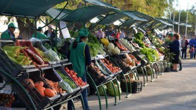Cómo se explica el boom de las ferias de agricultura familiar en Valle Medio y Río Colorado