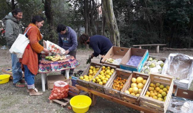 Laboulaye: Ferias agroecológicas, una tendencia que crece entre familias de la región