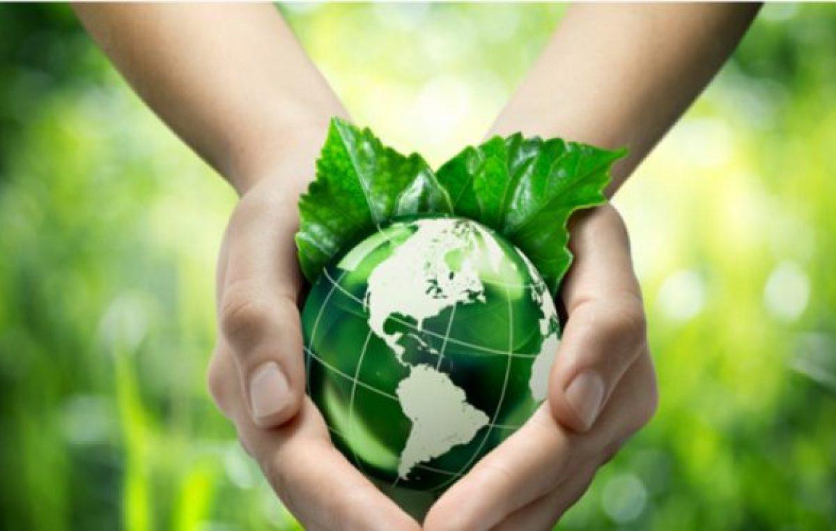 Se celebra el Día Mundial del Medio Ambiente