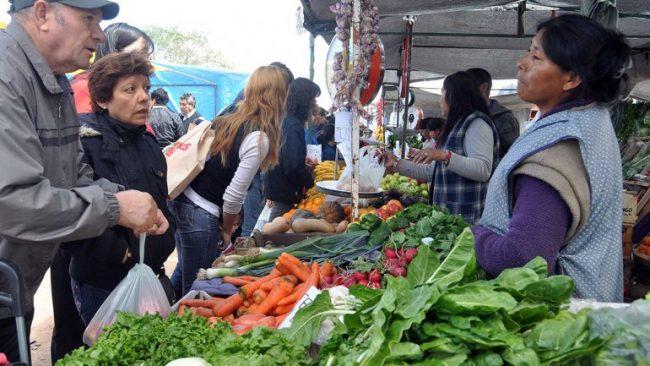 Neuquén: La crisis también llegó a la Feria del Parque Central