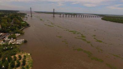 """Un informe arrojó que el Río Luján es uno de los """"más contaminados con glifosato del país"""""""