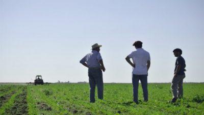 Arias: desde hace 35 años producen sin agroquímicos y son 100% orgánicos