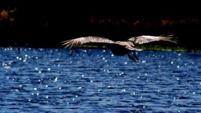Dos paisajes entrerrianos pre clasificados en las «7 Maravillas Naturales»