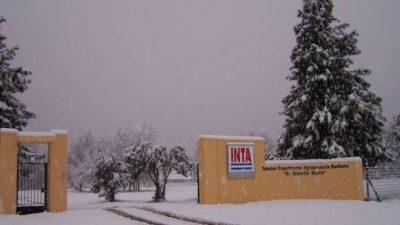 Trabajadores del Inta Bariloche denuncian grave situación presupuestaria