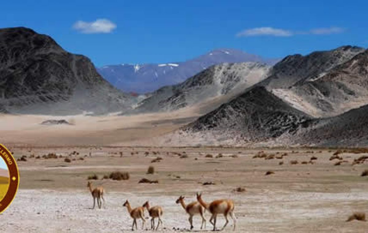 Parque Nacional San Guillermo, un destino que probablemente no conozcas