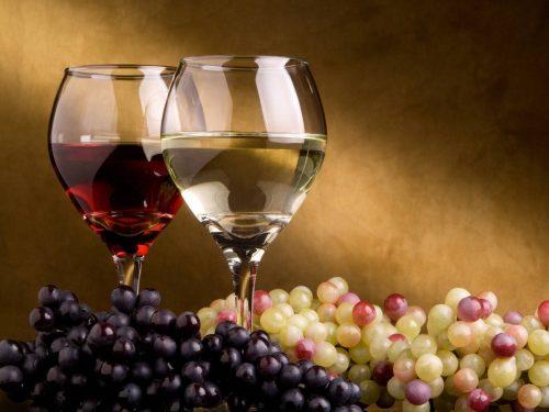 """Feria del Vino: Segunda edición de """"Degustar Salta"""", 5 y 6 de septiembre"""