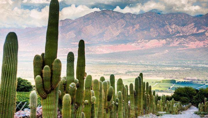 Eligen a Salta entre los 10 destinos turísticos más fascinantes para el 2019