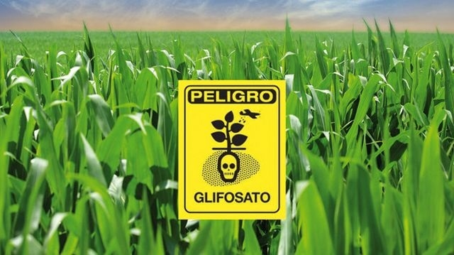 Misiones prohibió el uso del glifosato en ejidos urbanos y algunas zonas rurales