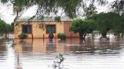 Greenpeace: Las zonas inundadas en Salta fueron las más desmontadas
