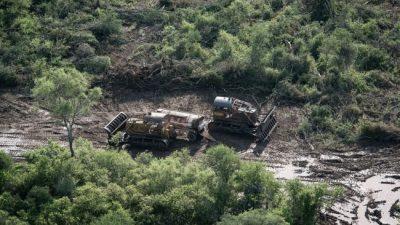 Desmontes en Salta: multan al empresario Braun Peña por destrucción de bosques nativos