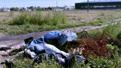 A seis meses de su inauguración, las huertas comunitarias de Mar del Plata están llenas de basura