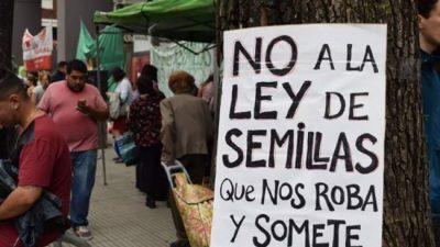 Pequeños productores, en alerta por el proyecto de Ley de Semillas de Cambiemos