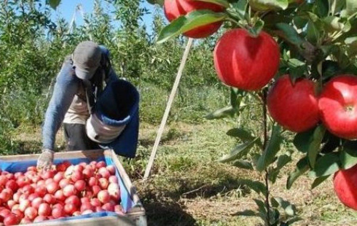 Río Negro: Barrera baja para manzanas y peras