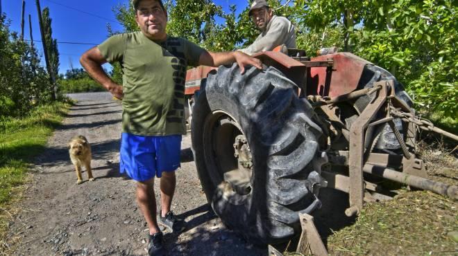 Roca: De cara a la Fiesta de la Manzana, los chacareros cuentan su realidad