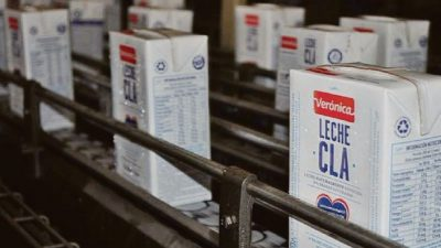 Reconocida empresa láctea pidió plan preventivo de crisis: Emplea a 600 personas