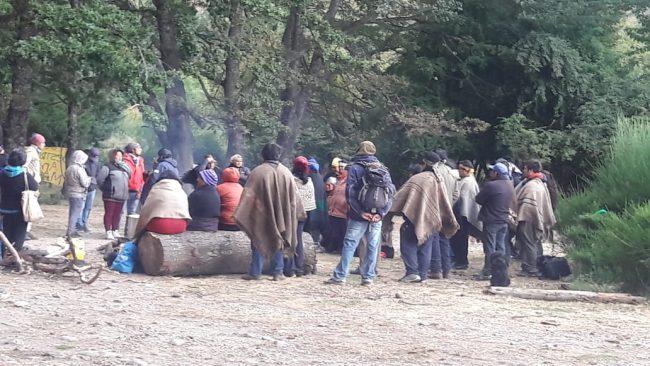 El negocio de vender territorios mapuches