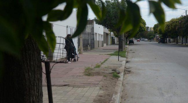 Detectan un faltante de 12 mil árboles en 15 barrios de Córdoba