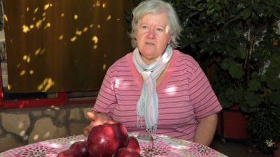 No va más: otra chacra neuquina ya no produce más manzanas