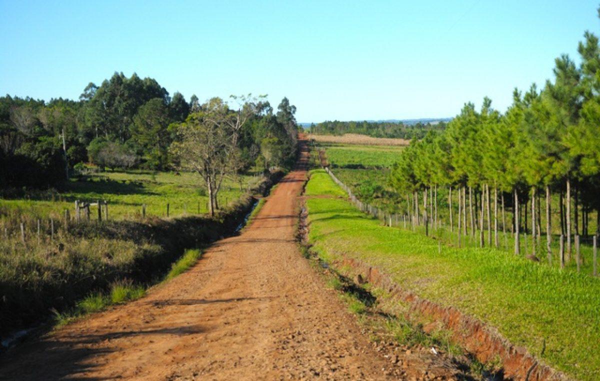 La UNLP cede más de 6 mil hectáreas a comunidades guaraníes en Misiones: «Es un avance histórico»