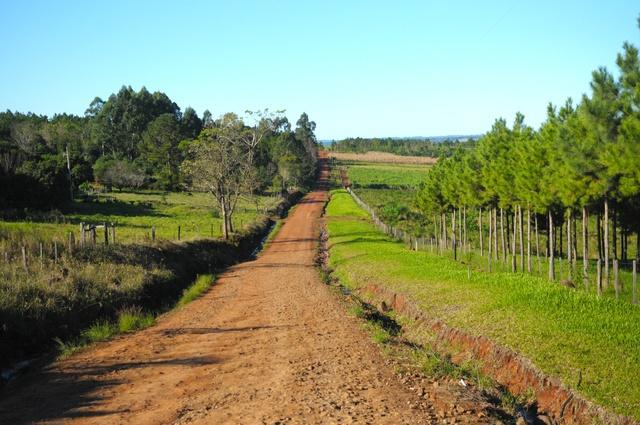 """La UNLP cede más de 6 mil hectáreas a comunidades guaraníes en Misiones: """"Es un avance histórico"""""""