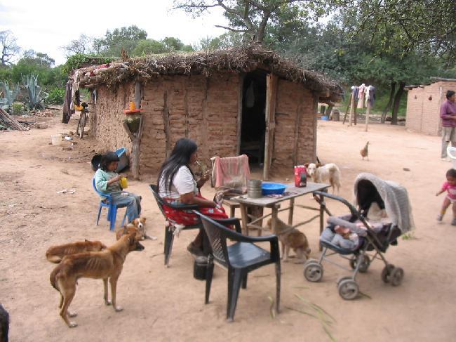 Chagas: la enfermedad que crece con la pobreza