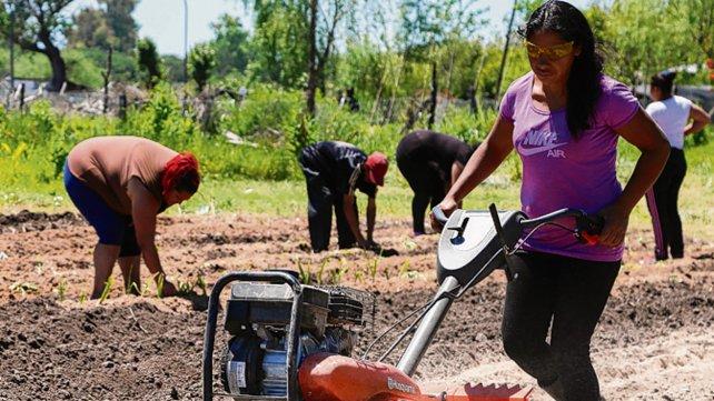 Rosario: Más de 13 mil jóvenes participan del proyecto Nueva Oportunidad
