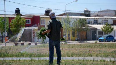 Los vecinos que quieran cuidar sus plazas en Neuquén cobrarán 5.500 pesos
