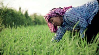 Más de 88 mil mujeres rurales mendocinas con dificultades para atender su salud