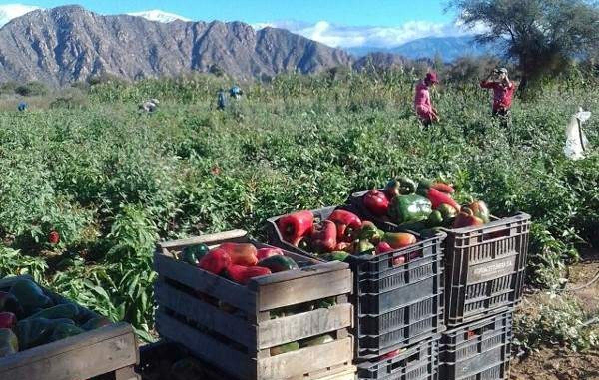 """FONAF: """"Un nuevo Ministerio de Agricultura para pocos"""""""