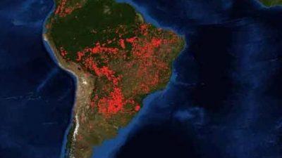 Amazonas: Bolsonaro omitió un alerta tres días antes de los incendios