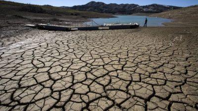 ONU urge cambiar dieta y uso de la tierra para frenar el cambio climático