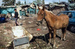 Hay 50.000 mendocinos que viven en barrios sin servicios