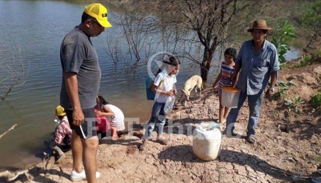Sequía que duele en Salta: la gente toma agua de donde beben los animales