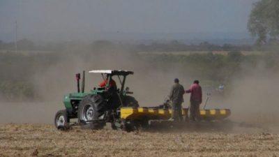 Al 50% del campo salteño lo explota el 1% de los productores
