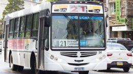 Nuevo aporte del Municipio de Bariloche a Mi Bus, esta vez de nueve millones de pesos