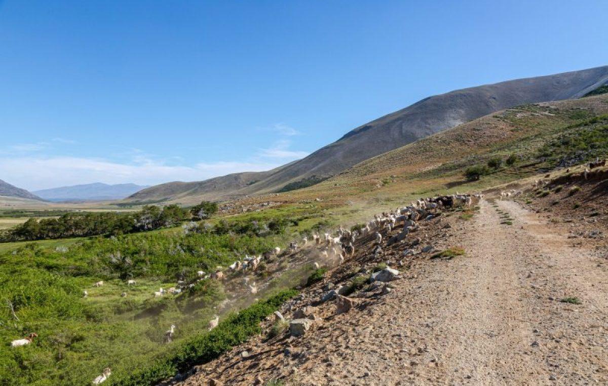 Lumabia, el paraíso escondido en la cordillera del norte neuquino