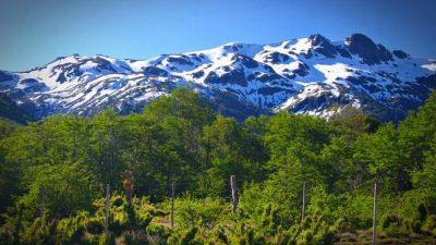 ¿Cuánta tierra rural de Argentina está en manos extranjeras?