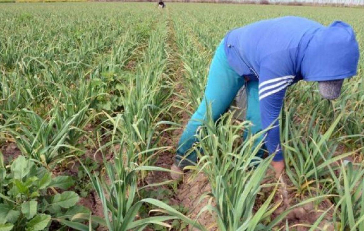 Mendoza: Salarios; educación, turismo y agro, los peores pagos