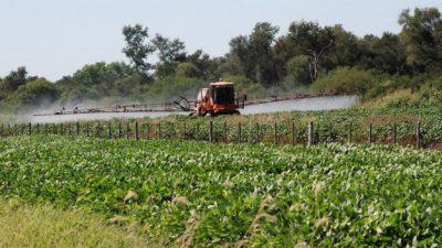 Un fallo histórico restringe a 800 metros las aspersiones terrestres en Sastre