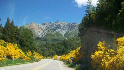 Bariloche, entre la Retama y el turismo