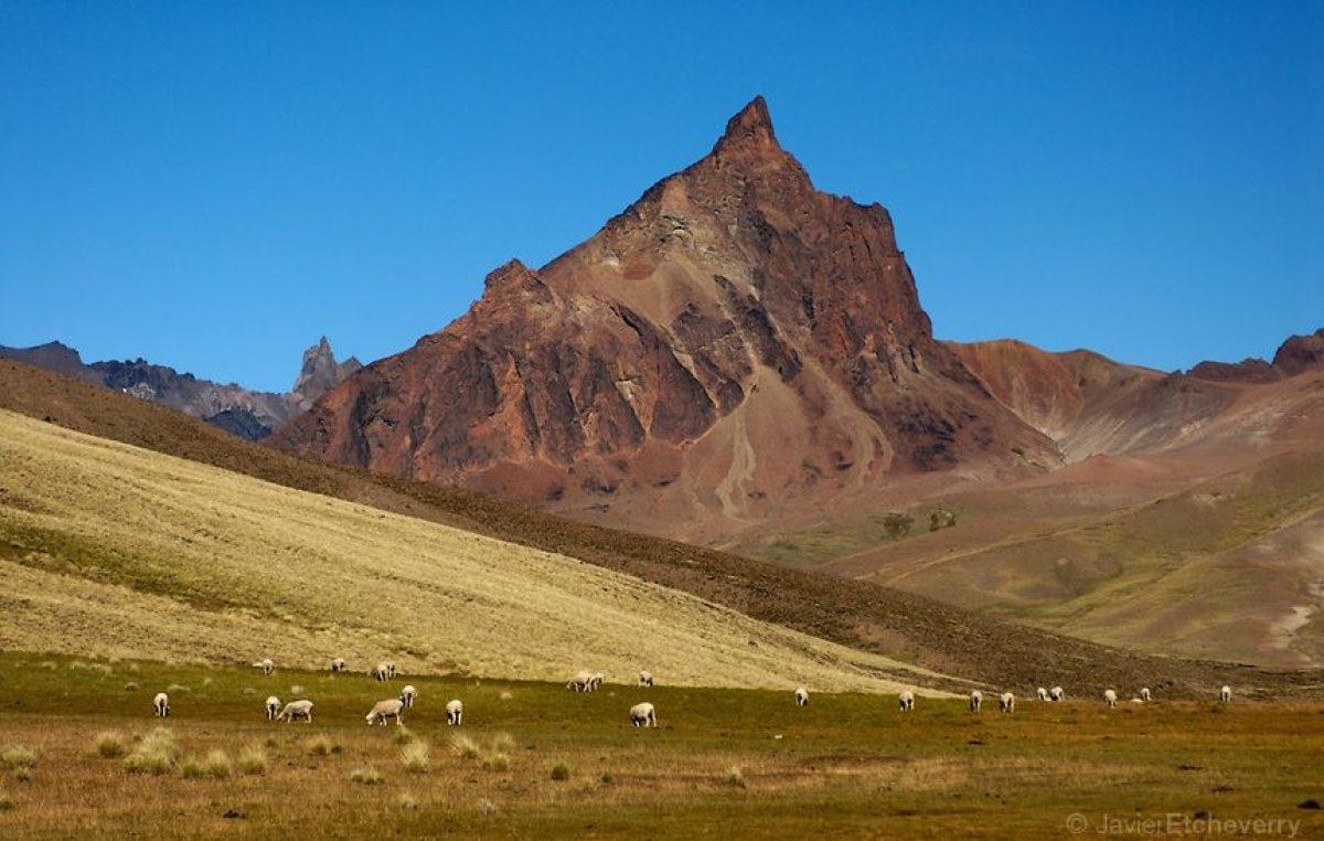 Una travesía autoguiada por la ruta menos conocida de la Patagonia