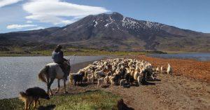 El Parque Provincial Tromen, un tesoro del norte neuquino