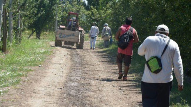 Trabajadores golondrinas varados en Río Negro volverán a sus provincias