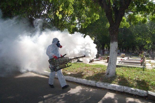 """Admiten que es """"preocupante"""" la cantidad de casos de dengue"""