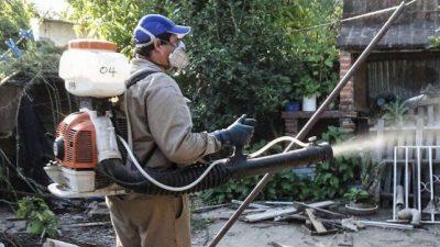 Tucumán enfrenta el brote de dengue más severo de su historia
