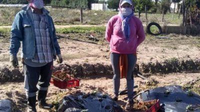 Trabajadores rurales: campaña para concientizar en Coronda