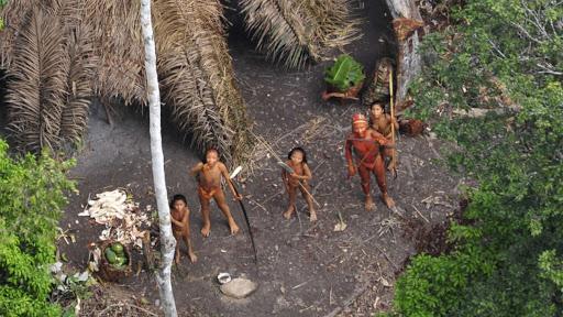 Pueblos indígenas no contactados corren peligro de aniquilamiento en Brasil