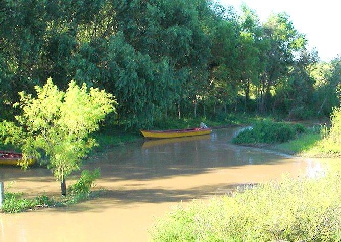 """El gobierno nacional quiere que el delta se transforme en """"área protegida"""""""