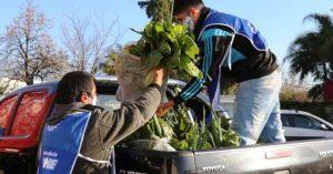 El Mercado Santafesino acerca bolsones de comida a más de 70 familias